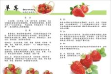 水果知识册子图片