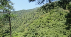 高山景观图片