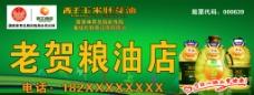 西王玉米胚芽油图片