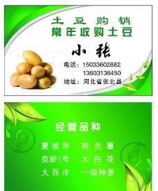 土豆购销名片图片