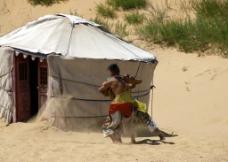 蒙古族居民 摔跤图片