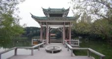 湖边景色图片