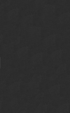 黑色皮革图片