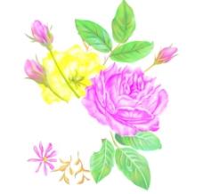 适用印刷 红玫瑰花图片