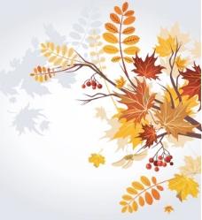 矢量秋季植物树叶背景素材