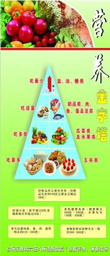 营养金字塔图片