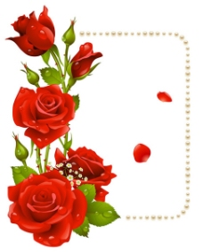 浪漫七夕玫瑰花边
