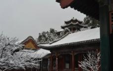 雪中画中游图片