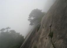 黄山陡崖图片