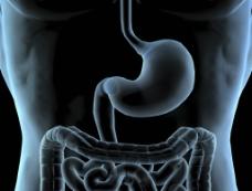肠胃透视图片