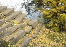 山间石板路图片
