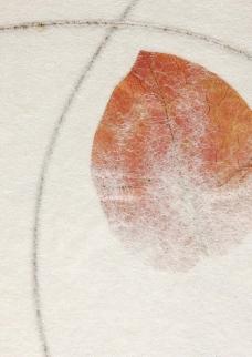 树叶 艺术纸 环保纸图片