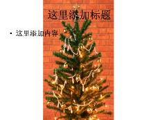 彩灯圣诞节图片