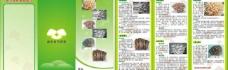 菌类彩页图片