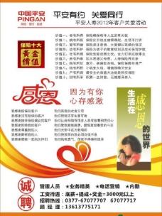 中国平安彩页图片
