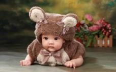 熊宝宝图片