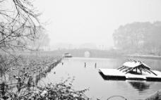 西湖雪景图片