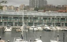 悉尼游艇图片