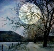 冬天夜晚图片