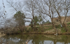 静静的河岸图片