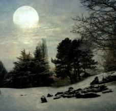 冬天的雪图片