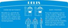 肌肉图 线条图图片