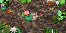 荷塘月色泥土色小池塘分层底图图片