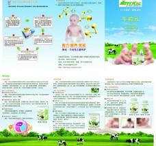 牛初乳三折页图片