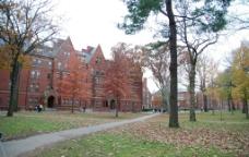 哈弗校园图片
