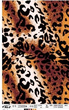 豹 豹子 壁纸 动物 桌面 228_357