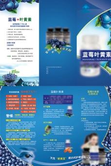 蓝莓叶黄素折页图片
