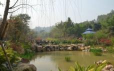 美丽 深圳龙城公园图片