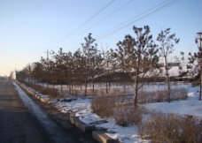 冰雪长春图片