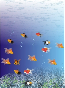 深海鱼图片
