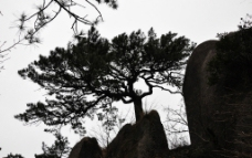 黄山岩石图片