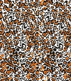 唯美豹纹图片