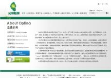 时尚灯饰网站内页设计模板图片