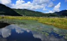 云南腾冲北海湿地图片