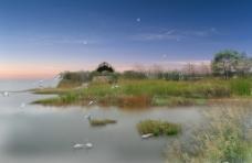 湿地景观图片
