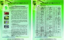 中医药单页图片